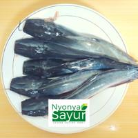 Ikan Lele Segar