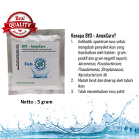 Obat Bakteri Aeromonas / borok / busuk insang - BYO-AmoxCure 5 gr