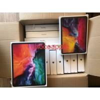 Apple iPad Pro 2020 11 inch Gen 2 2nd 256GB 256 Wifi Only Silver Gray