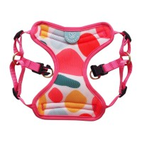 Gentle Pup - Candy Callie Harness