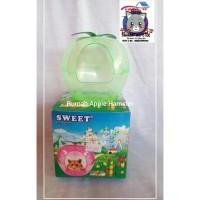 sweet house apple hamster