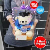 Promo! Boneka Wisuda 20cm Custom + Nama, Pin, Box Mika