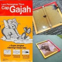 Lem Tikus papan cap gajah