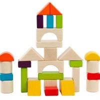 Mainan Edukasi Anak Balok Kayu Bentuk - 30 pcs DREAM BUILDING BLOCK