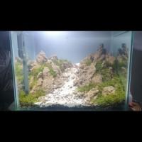 aquarium aquascape jadi fullset iwagumi