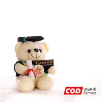 Boneka Wisuda Bear Duduk Imut 22 cm - Putih