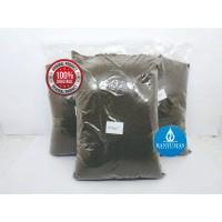Pelet pakan benih ikan lele PF800 500gram protein tinggi AA03208