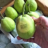 Pear Xiang lie Manis Premium - 1kg