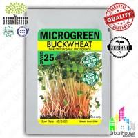 MICROGREEN Benih BUCKWHEAT Pink Star Organic Microgreens IMPORT