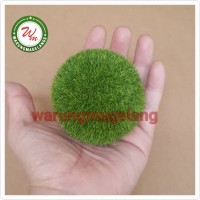 BOLA Tanaman sintetis Aquascape Terrarium Marimo Moss Ball Rumput