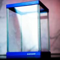 aquarium cupang premium nisso bahari - Biru