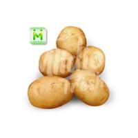 Kentang Kecil 1kg / Kentang Rendang / Sayur Segar Mlidjo