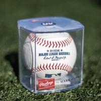 TAM_ Rawlings Official MLB Baseball and Display Cube Baseball Bola
