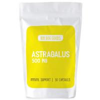 ASTRAGALUS 500 mg - KIN DOG GOODS