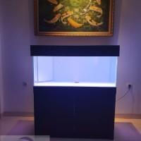 Cabinet Aquarium Set 120cm paket arwana