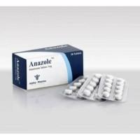 TERLARIS Anazole 1mg ECER 10 tablets/strip Alpha Pharma Arimidex