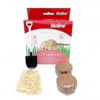 Obat Rumput Kucing Anti Hairball Sehat Pencernaan Bioline Cat Grass