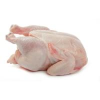 Ayam Broiler Ayam Potong Segar Kiloan Pasar Murah Bandung