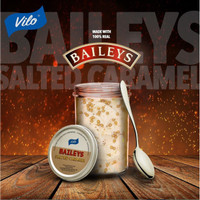 Vilo Gelato Baileys Salted Caramel