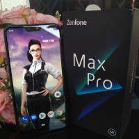 Asus Zenfone Max Pro M2 4/64 (Second)