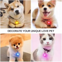 Liontin Bandul Anjing Kucing  LED BONE  Pet ID TAG