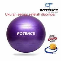 Gymball SPEEDS 55 cm / Gym ball / Bola Yoga / Gymball 55cm