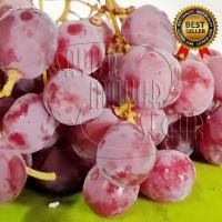 Buah Anggur Segar / Anggur Merah / Fresh Grape Australia 250 gram