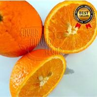 Jeruk Sunkist Premium Buah segar dan Manis (Grosir / Eceran)