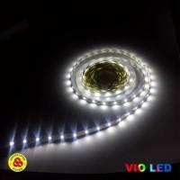 Vio LED Strip 2835 12V Cool Daylight IP33 Flexible Strip Putih 6000K