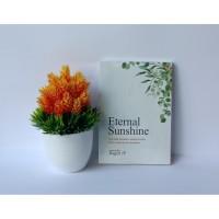 Novel Eternal Sunshine oleh Ragiel JP