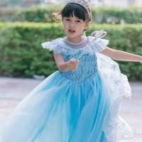 Lea Frozen Anna Elsa Terbaru Disney Princess Kostum Impor Dress Baju P