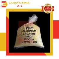 PAC (Poly Aluminium Chloride) Al2O3 ex. RRC Evoqua 1 kg