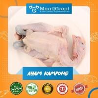 Ayam Kampung Hidup / bersih 1 ekor