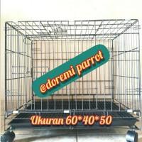 kandang kucing size L (60x40x50) / Kandang terbaik / Kandang Murah