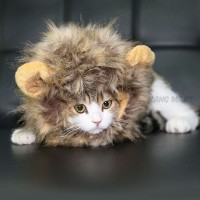 Baju Kostum Kucing Anjing Model Wig / Rambut Singa Super Lembut