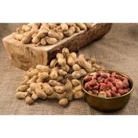 Kacang Tanah Kulit Organik