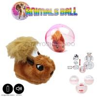 Mainan Anak Hamster Ball   Mainan Boneka - Putih