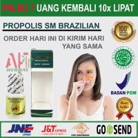 Obat Alami Sinusitis, Flu dan Sakit kepala - Walatra Propolis Original