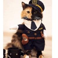 Kostum Lucu Kucing Anjing Hewan Police Polisi Satpam Security Baju