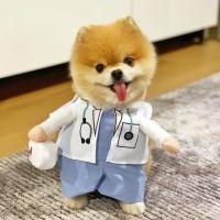 Kostum Kucing Lucu Anjing Hewan Doctor Dokter Medis Baju Unik