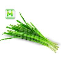 daun bawang pre / sayuran segar