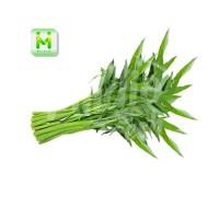 sayur kangkung / sayur segar