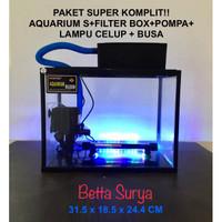 Paket Aquarium Aquascape Aquarium Kaca Nikita Murah Cocok Untuk Pemula