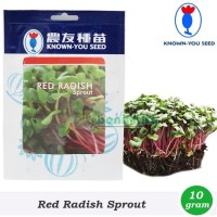 Benih-Bibit Microgreens/Sprout Red Radish (Known You Seed)