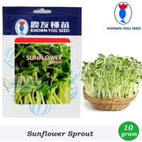 Benih-Bibit Sunflower Sprout/Microgreens (Known You Seed)
