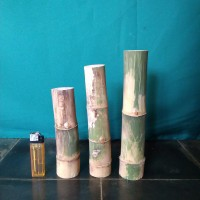 Bambu unik buntet bumpet buta tidak berlobang asli alami per pcs