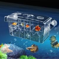 Breeding Box Internal XL Guppy Molly Fish Box Acrylic Aquarium