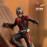 HOT TOYS HT MMS497 MARVEL ANT-MAN AND THE WASP 1/6 SCALE COLLECTIBLE