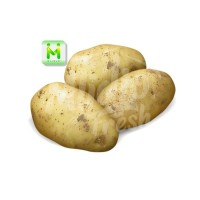 kentang / sayuran segar
