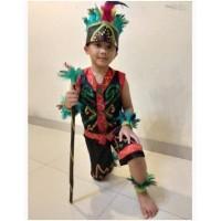 Daerah Dayak Anak Wanita PAUD/TK | Baju Adat Karnaval Kostum Tari